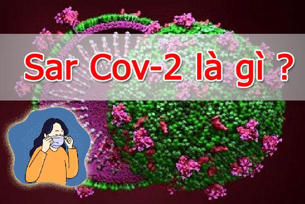 sars cov-2 là gì